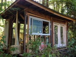 Cedar Nest 2015