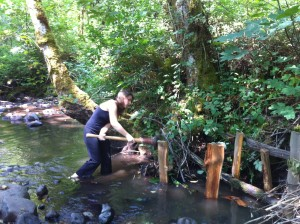 Creek Restoration