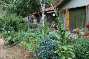 Wilson Creek Gardens