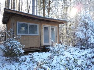 Ceder Nest in snow