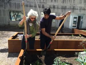 UN Garden 2016